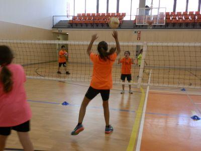 Campus de Volei - Voleibol -